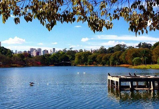 Parque do Ibirapuera @parquedoibirapuera